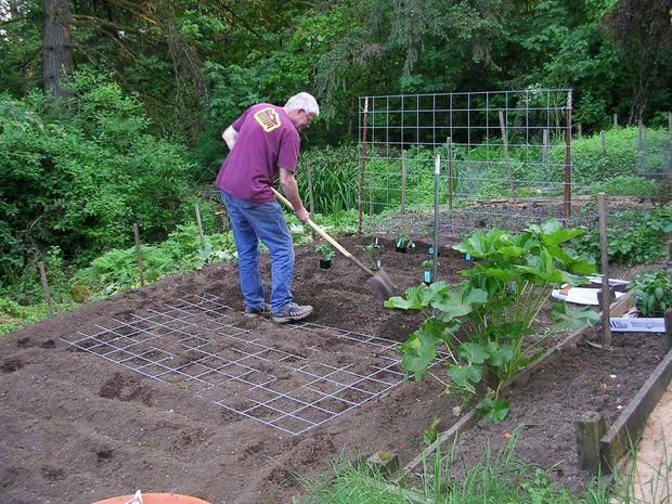 Αστρολογία και Κηπουρική