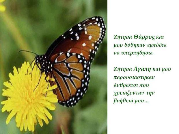 To μάθημα της πεταλούδας
