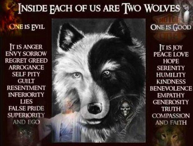 Οι δύο λύκοι