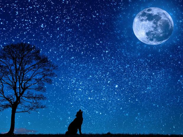 Η επιρροή της Σελήνης - B' Μέρος