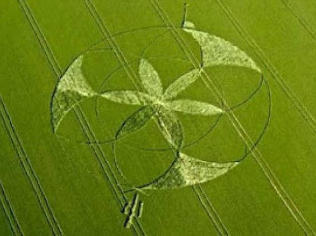 Νέα αγρογλυφικά βρέθηκαν στην Βρετανία