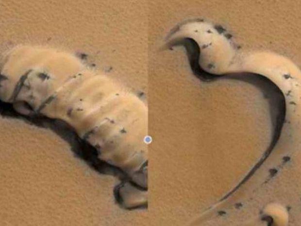 Μυστήριο: «Αράχνες» στην επιφάνεια του πλανήτη Άρη!