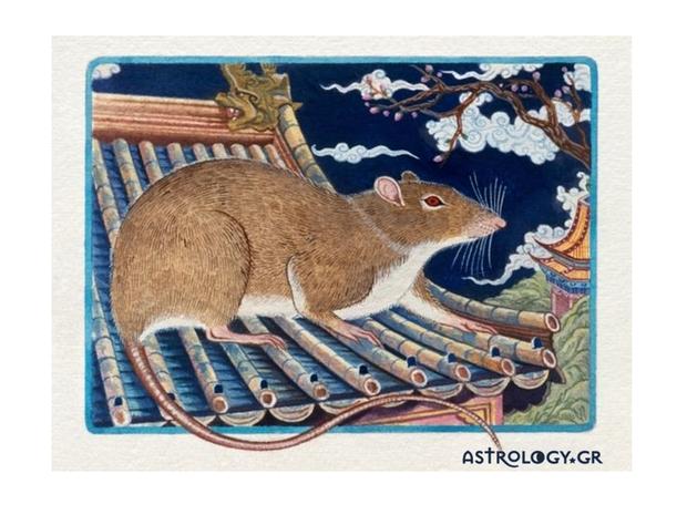 Ζώδια Κινέζικης Αστρολογίας: Ο Ποντικός