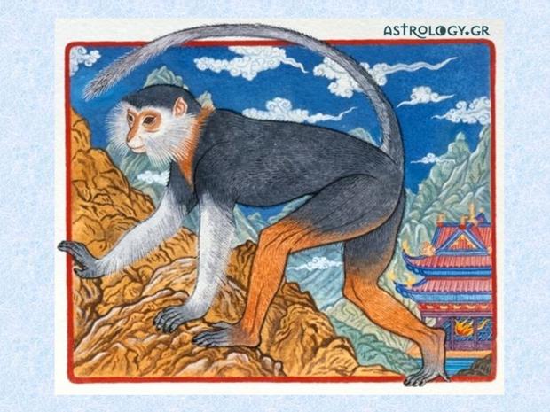Ζώδια Κινέζικης Αστρολογίας: Ο Πίθηκος