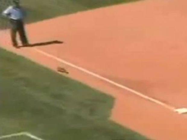Απίστευτο σόου από σκίουρο σε... αγώνα μπέιζμπολ!