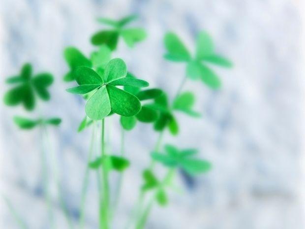Οι 12 τυχερές στιγμές της ημέρας: Τρίτη 12 Μαρτίου