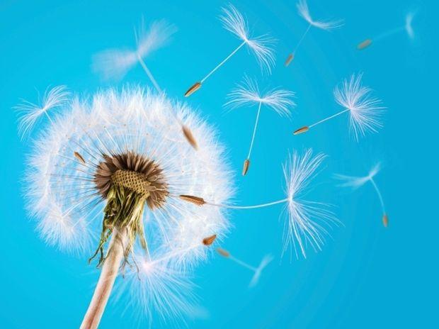 Οι 12 τυχερές στιγμές της ημέρας: Δευτέρα 1η Απριλίου