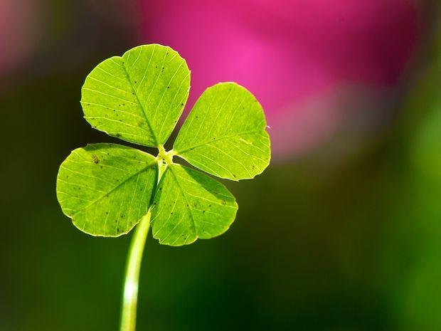Οι 12 τυχερές στιγμές της ημέρας: Κυριακή 14 Απριλίου