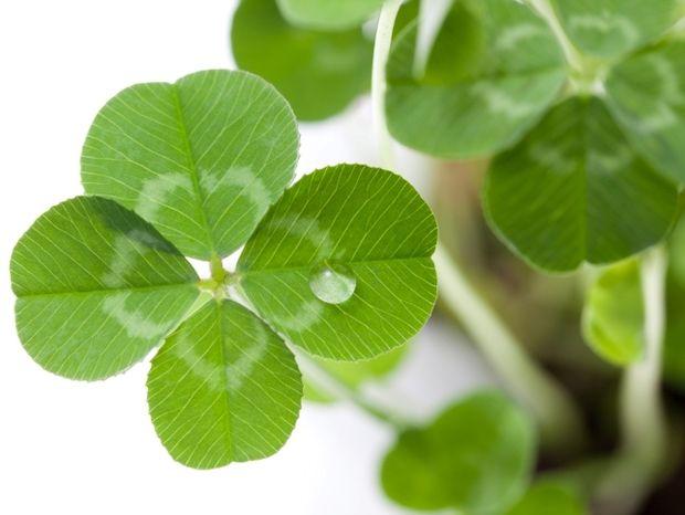 Οι 12 τυχερές στιγμές της ημέρας: Τετάρτη 24 Απριλίου