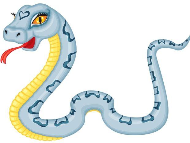Κινέζικη Αστρολογία: Το φίδι και τα επαγγελματικά του
