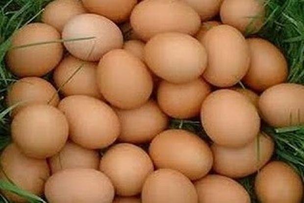Μάθε 7 πράγματα που δεν τα φανταζόσουν για τα αβγά!