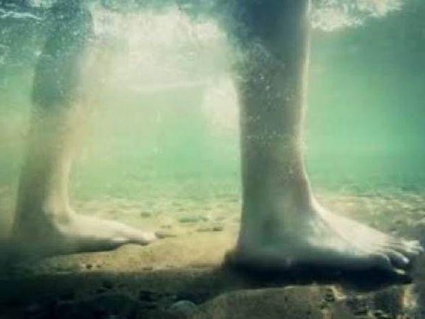 Τι πρέπει να κάνετε εάν πατήσετε δράκαινα στη θάλασσα;
