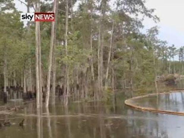 Βίντεο-ΣΟΚ: Γιγαντιαία ρουφήχτρα καταπίνει... ολόκληρα δέντρα!