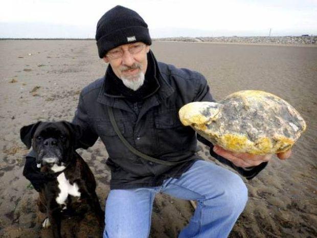 Δείτε την αηδιαστική ανακάλυψη που έκανε σε παραλία και έγινε πλούσιος
