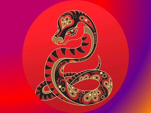 Κινέζικη Αστρολογία: Η ερωτική ζωή του Φιδιού