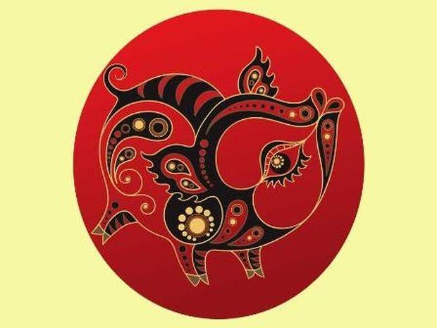 Κινέζικη Αστρολογία: Η ερωτική ζωή του Χοίρου
