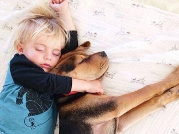 Μεγαλώνουν μαζί! Το κουταβάκι και το αγοράκι που κοιμούνται παρέα σε νέες περιπέτειες! (εικόνες)