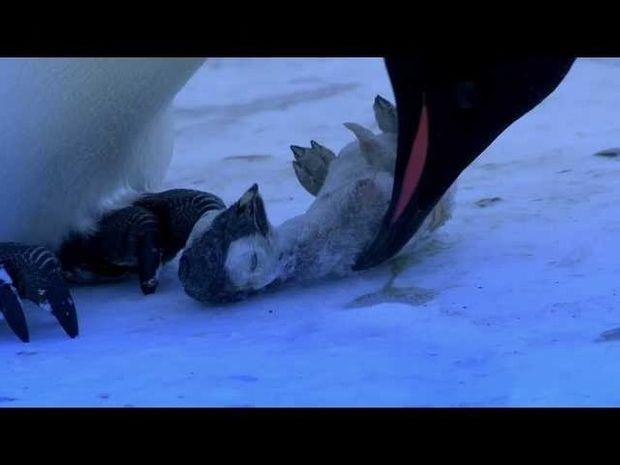 ΣΥΓΚΙΝΗΤΙΚΟ VIDEO: Πως είναι όταν χάνει η μάνα το παιδί της!