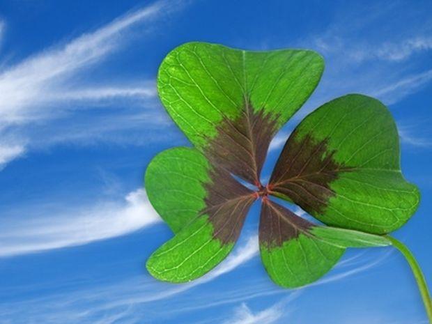 Οι τυχερές και όμορφες στιγμές της ημέρας: Παρασκευή 7 Φεβρουαρίου