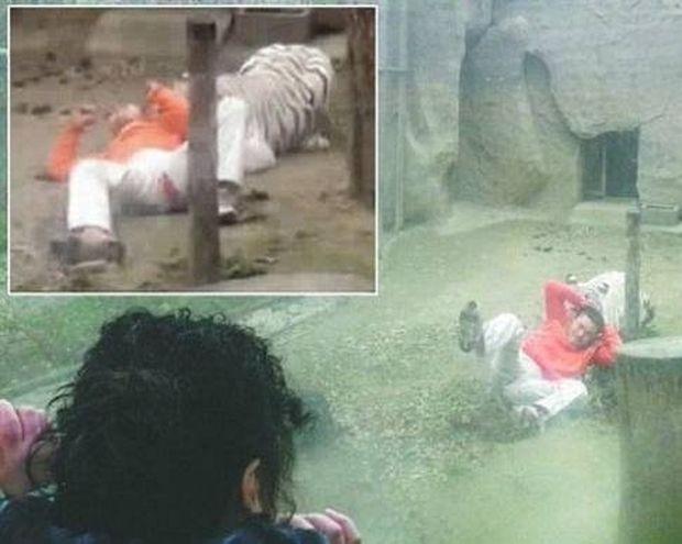 ΣΟΚ: Ήθελε να θυσιάσει τον εαυτό του και μπήκε σε κλουβί με τίγρεις