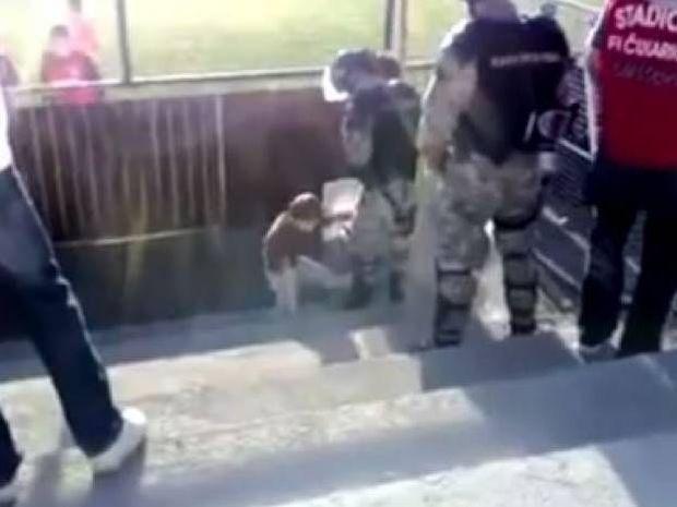 Βίντεο: Πιτσιρικάς κλωτσά έναν άνδρα των ΜΑΤ