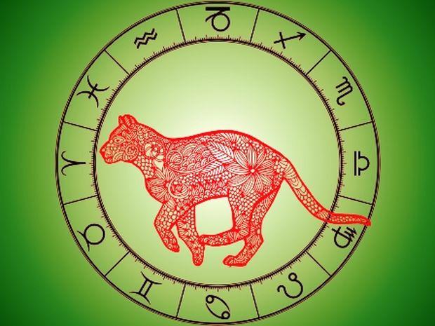 Κινέζικη αστρολογία: Η Τίγρη και τα 12 ζώδια της Δυτικής αστρολογίας