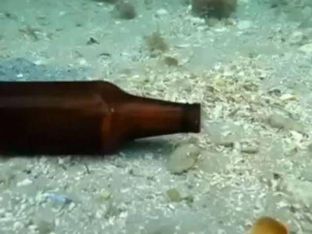 Τι ζει μέσα στο μπουκάλι μπίρας; (βίντεο)