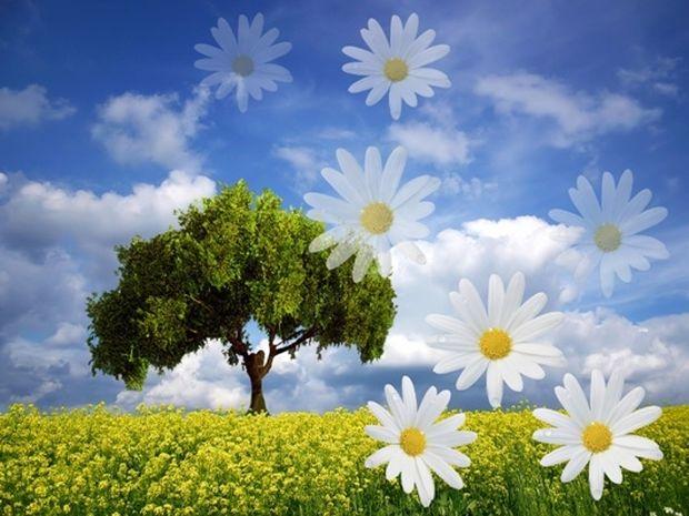 Οι τυχερές και όμορφες στιγμές της ημέρας: Κυριακή 6 Απριλίου