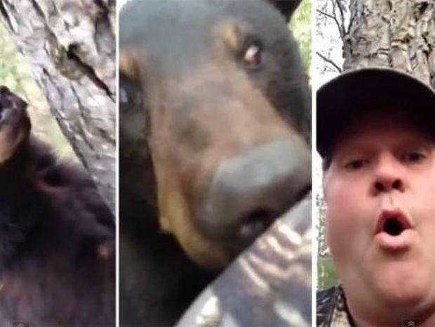 ΑΠΙΣΤΕΥΤΟ: Δείτε τι ΔΕΝ έκανε όταν βρέθηκε τετ α τετ με μια αρκούδα! (βίντεο)