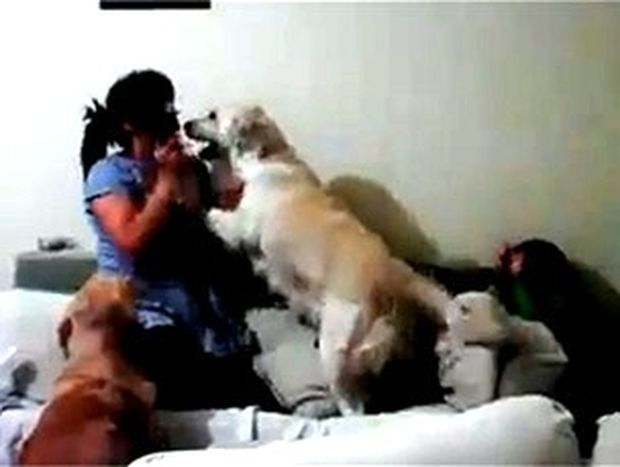 ΑΠΙΣΤΕΥΤΟ VIDEO: Σκυλιά προστατεύουν παιδί από τη θυμωμένη μητέρα του!