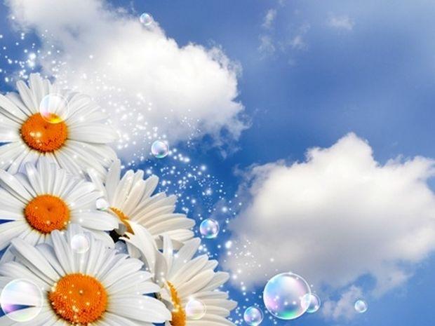 Οι τυχερές και όμορφες στιγμές της ημέρας: Σάββατο 26 Απριλίου