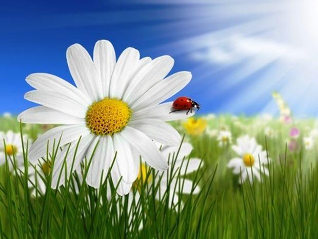 Οι τυχερές και όμορφες στιγμές της ημέρας: Παρασκευή 16 Μαΐου