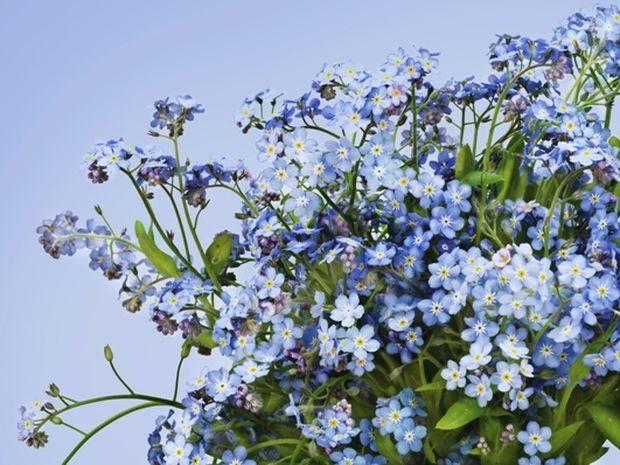 Οι τυχερές και όμορφες στιγμές της ημέρας: Δευτέρα 19 Μαΐου