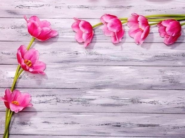 Οι τυχερές και όμορφες στιγμές της ημέρας: Τρίτη 20 Μαΐου