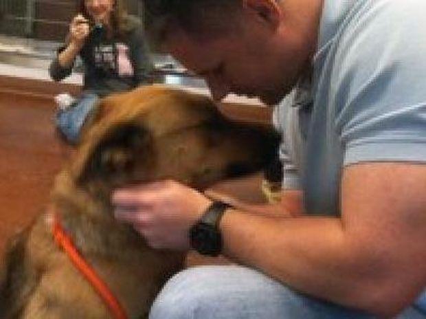 ΣΥΓΚΙΝΗΤΙΚO VIDEO: Αυτή η σκυλίτσα βρήκε το αφεντικό της μετά από εφτά μήνες!