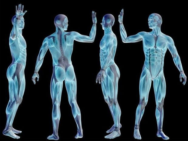 """Αυτά είναι τα 6 πιο """"άχρηστα"""" μέρη του ανθρώπινου σώματος"""