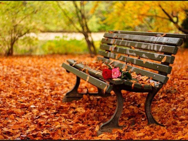 Φθινόπωρο: Ώρα για ουσιαστικές νέες αλλαγές στη ζωή σου!