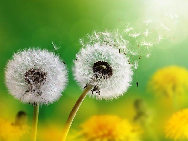 Οι τυχερές και όμορφες στιγμές της ημέρας: Παρασκευή 10 Οκτωβρίου