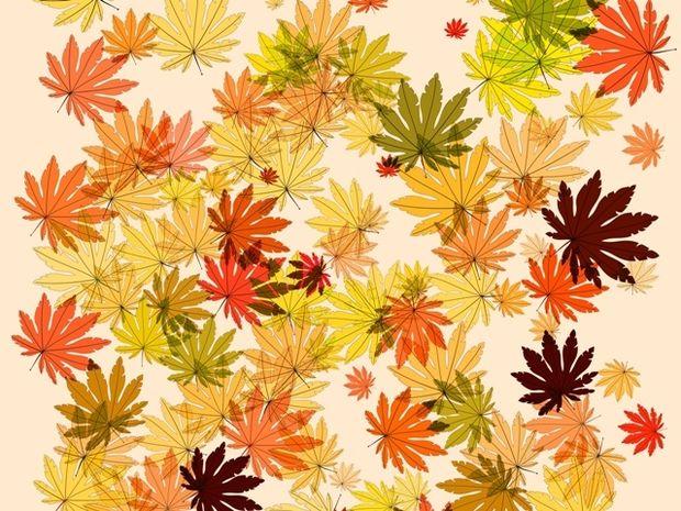 Οι τυχερές και όμορφες στιγμές της ημέρας: Σάββατο 1η Νοεμβρίου