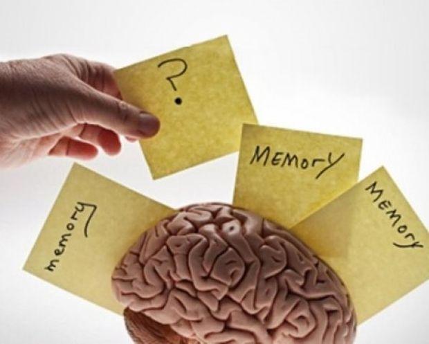 Ξεχνάτε διαρκώς; 4 tips για να αποκτήσετε μνήμη... «ελέφαντα»