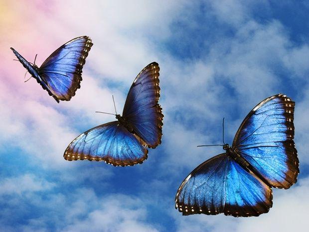 Οι τυχερές και όμορφες στιγμές της ημέρας: Δευτέρα 24 Νοεμβρίου