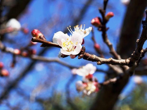 Οι τυχερές και όμορφες στιγμές της ημέρας: Τρίτη 24 Μαρτίου