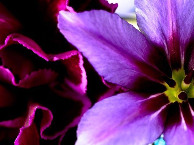 Οι τυχερές και όμορφες στιγμές της ημέρας: Πέμπτη 9 Απριλίου