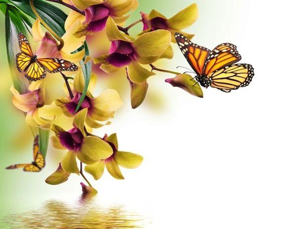 Οι τυχερές και όμορφες στιγμές της ημέρας: Τρίτη 21 Απριλίου