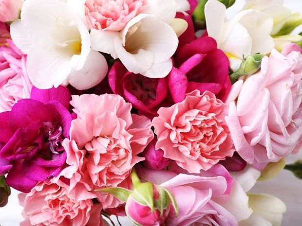 Ποιο λουλούδι αντιστοιχεί στο ζώδιό σου;