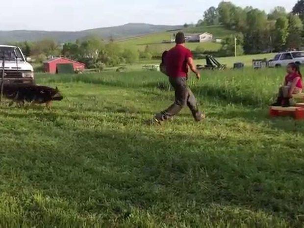 Προσπάθησαν να απαγάγουν αυτό το κοριτσάκι... Δείτε πως αντέδρασε ο σκύλος της!