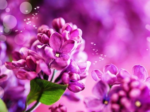 Οι τυχερές και όμορφες στιγμές της ημέρας: Παρασκευή 22 Μαΐου