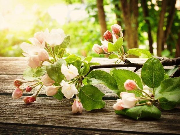 Οι τυχερές και όμορφες στιγμές της ημέρας: Κυριακή 14 Ιουνίου