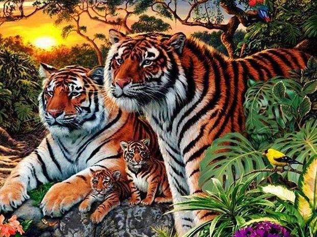 Μπορείτε να βρείτε πόσες τίγρεις κρύβονται σε αυτή την εικόνα;