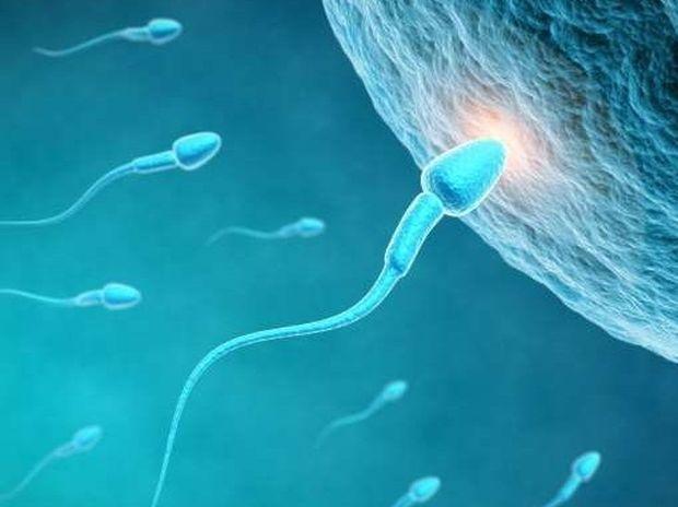Ανδρική γονιμότητα - Καθημερινά μέτρα και εναλλακτική ιατρική